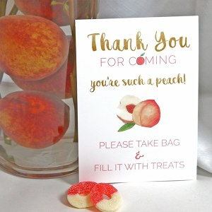 Peach Party Thank You Treat Sign