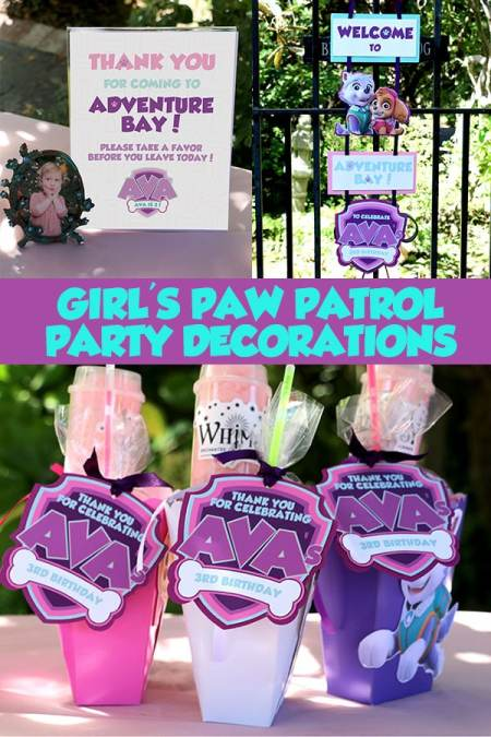 Girl's Puppy Patrol Decorations