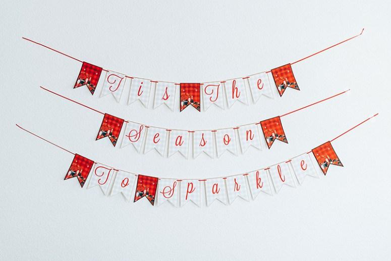 Tis the season to sparkle banner