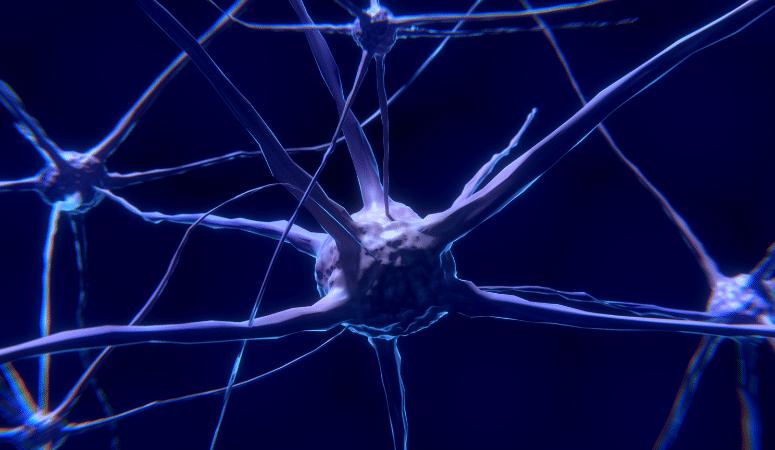 Improve Your Mindset Through Personal Development