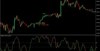 Gann Wildhog Divergence Forex Trading Strategy
