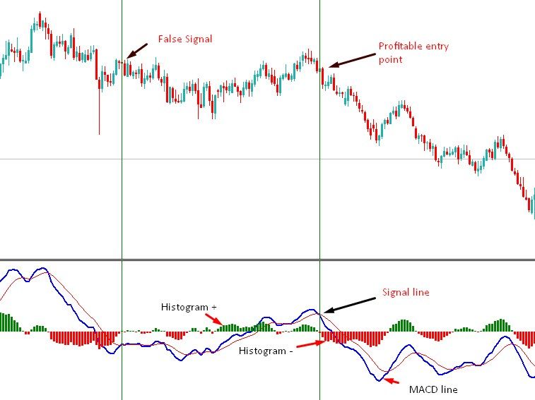 Best MACD Trading Strategies