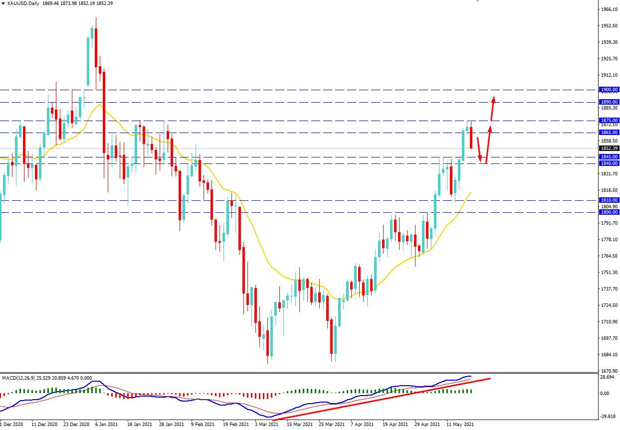 Gold Faced Resistance
