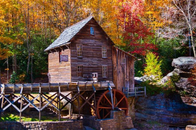 fall bsf study of genesis www.atozmomm.com