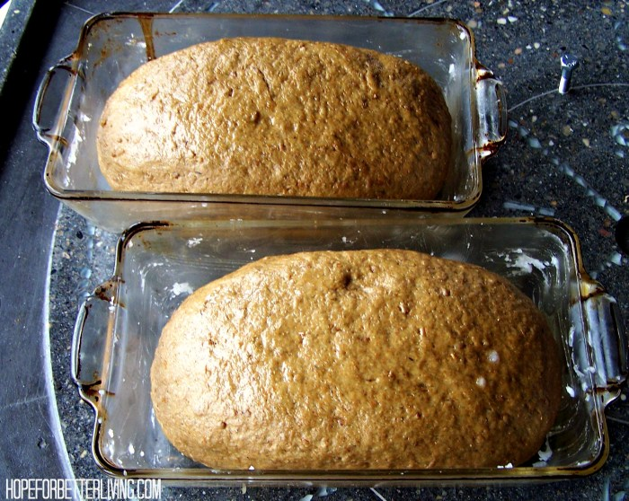 An Artisan Bread Recipe with Spelt & Rolled Rye