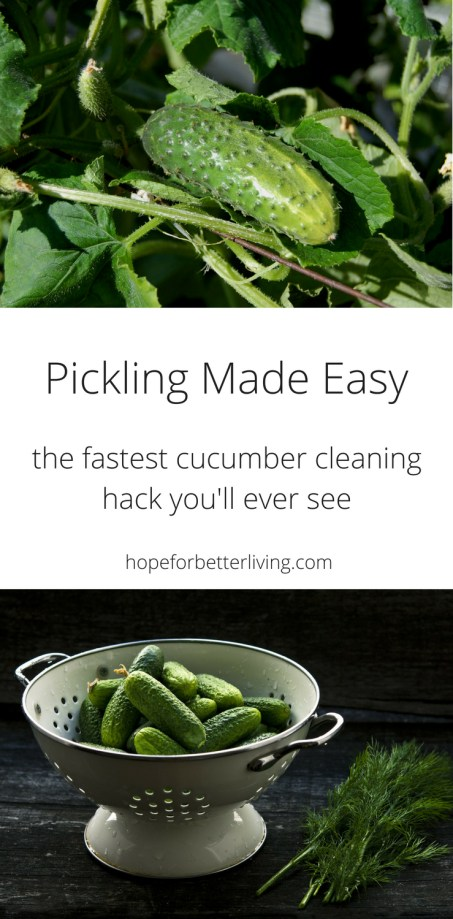 Scrubbing cucumbers always takes time! Here's a simple technique that will speed the process!