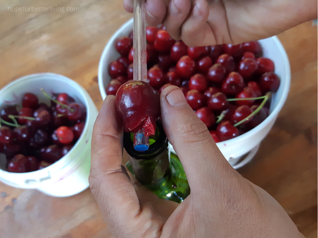 A Cheap and Easy Way to Pit Cherries
