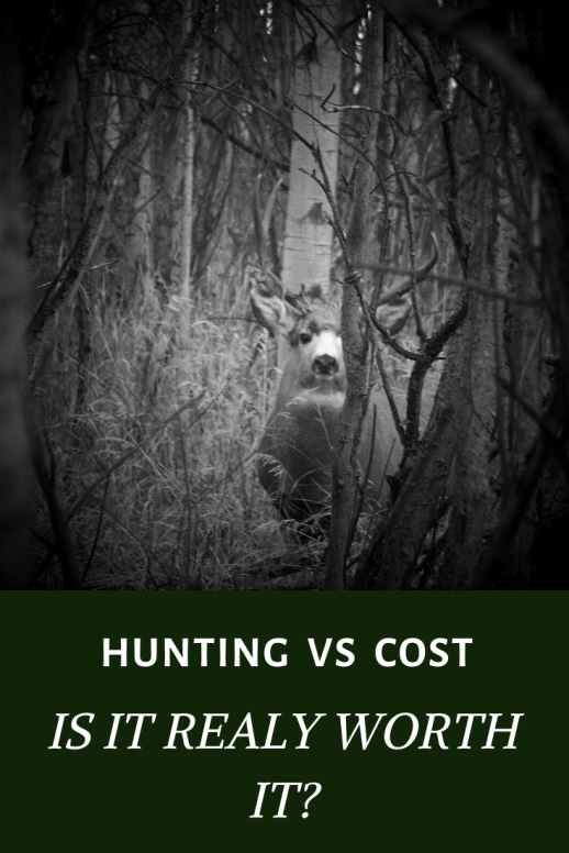 Hunting for meat, is it financially worth your time and effort?