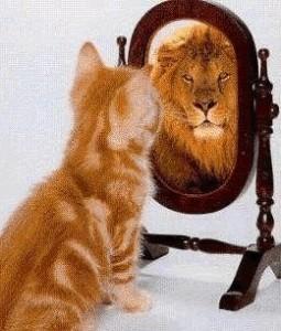 Autoestima inflada