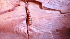 the natural carvings
