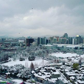 Winter in Suwon