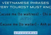 Vietnamese Phrases and Words
