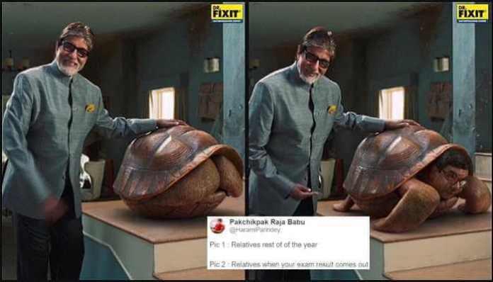 Amitabh bachchan giant turtle meme