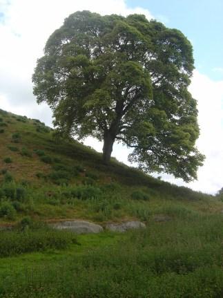 Newgrange, Knowth, Dowth, Bru na Boinne