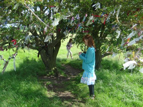 The Fairy Tree, The Wishing Tree, The May Bush covered in clotties/clooties