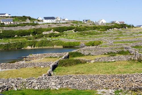 Stone walls in Co. Clare. (credit: mirsasha/Flickr via creative commons license)
