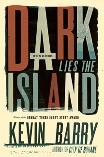 Dark Lies the island by Kevin Barry (Graywolf Press, 2013)