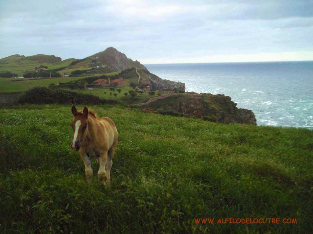 Cantabria en Furgoneta
