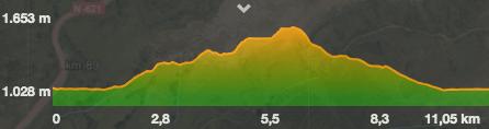Perfil de la ruta por la arista NE al Gilbo