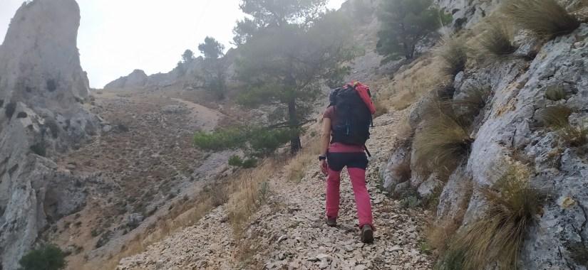 Rosa caminando