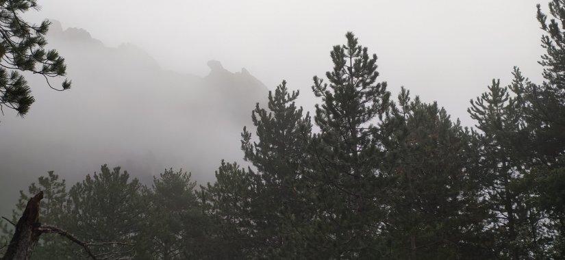 Niebla en la pedra