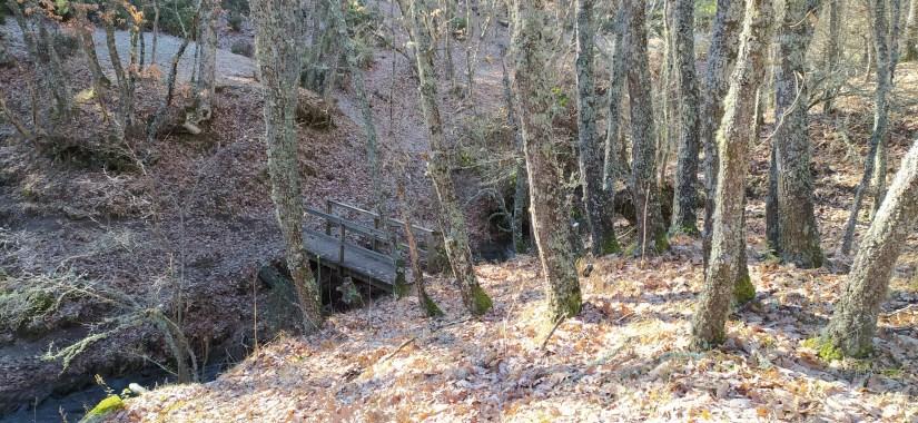 Puente en la Hiruela