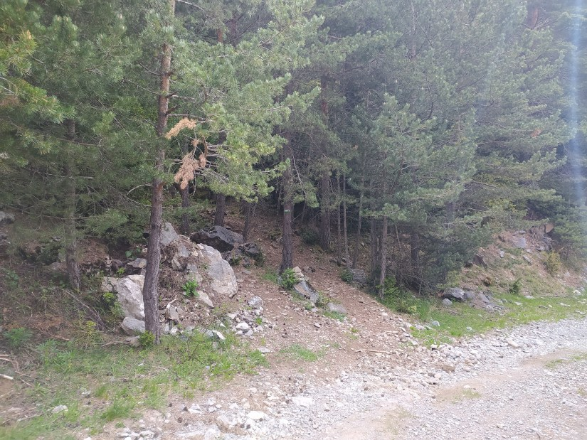 Ruta al Ibonciecho desde la Sarra
