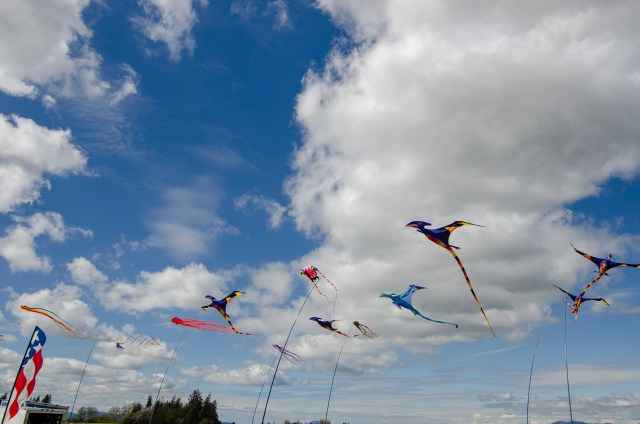 Kites of pterodactyls flying amongst blue sky and clouds