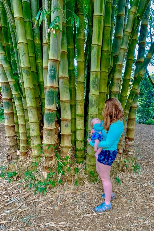 Woman carrying baby, with bamboo trees in the background