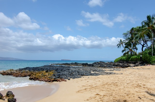 An empty cove with black lava rock, palm trees and clear waves in the golden sand