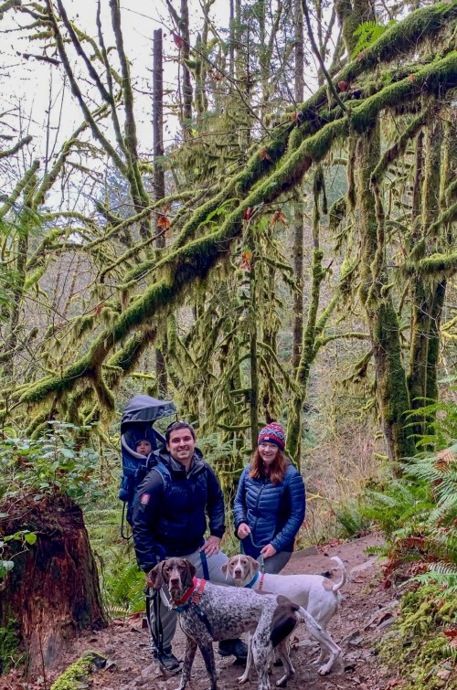 Man carrying baby in backpack, holding a dog, and woman holding a dog. Located in mossy forest