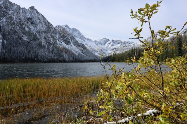 Looking at a lake and mountains from the edge of the lake, branches covering part of the view. Still lake and snow covered mountains in the background