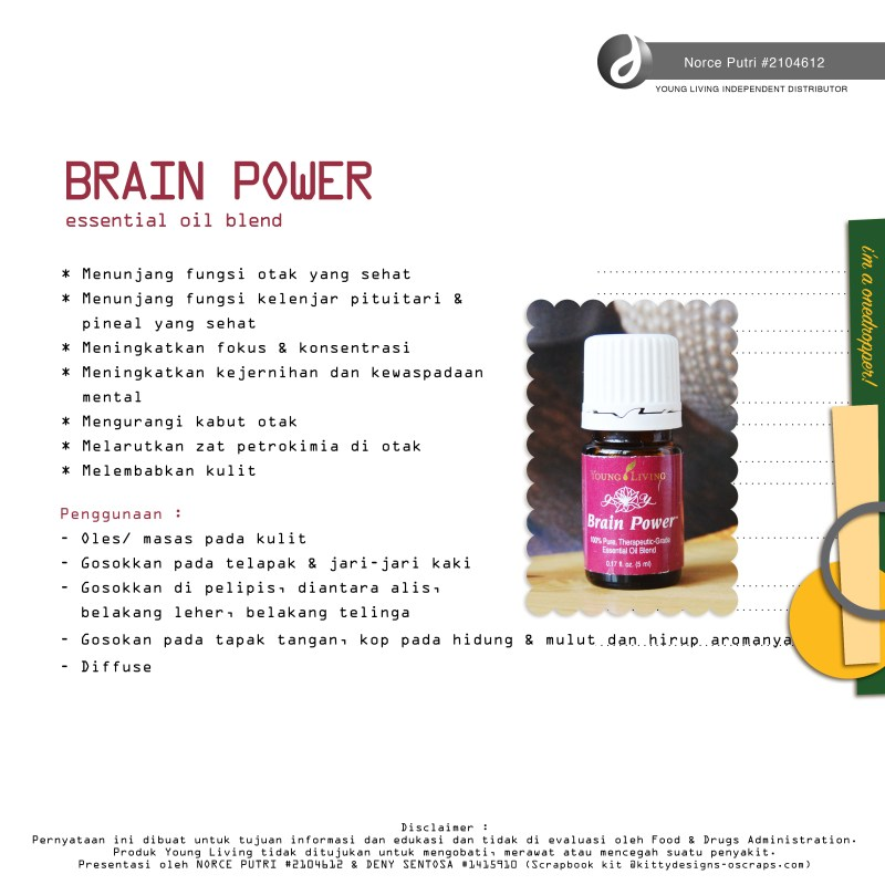 brain power indo norce