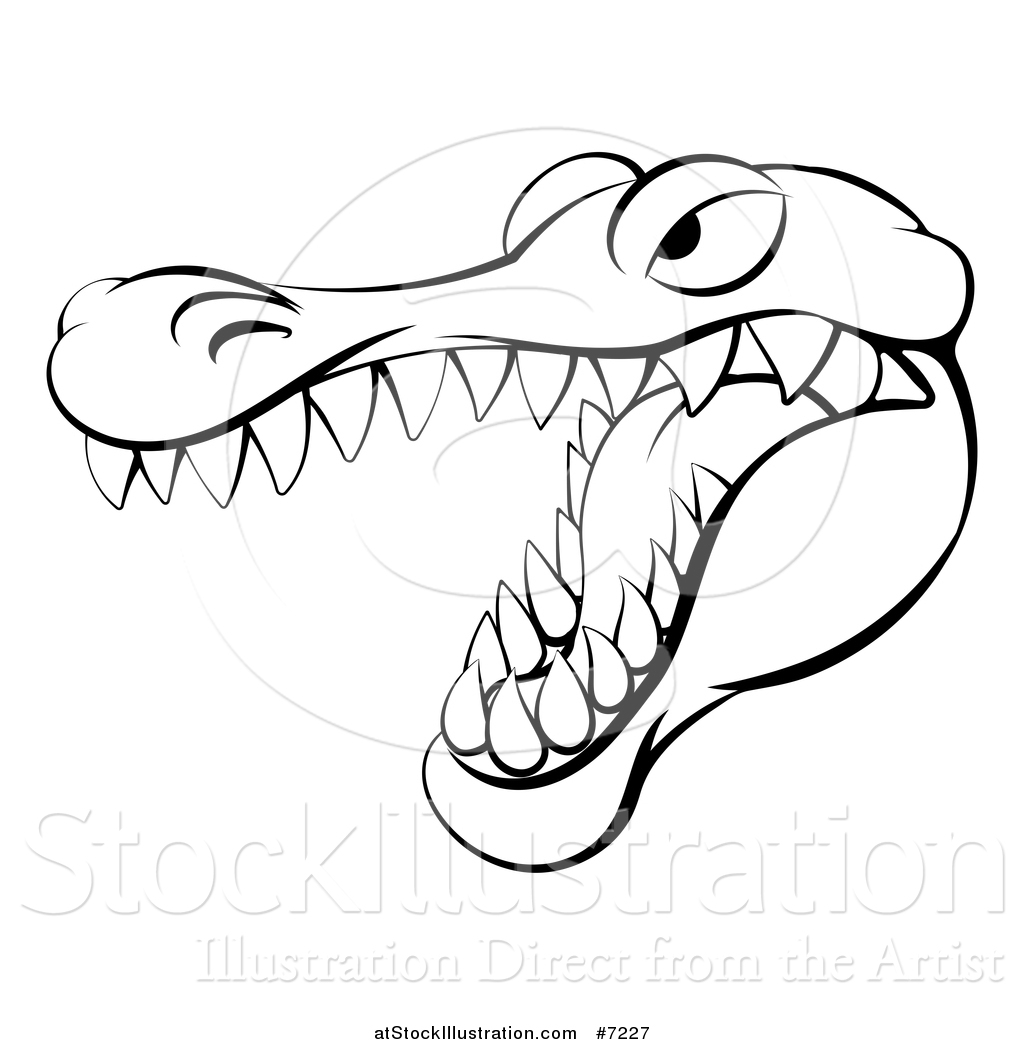 Vector Illustration Of A Black And White Aggressive