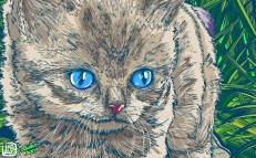 gato-2-frame-003
