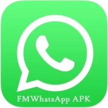 Triada Malware infects Android Devices via an unofficial WhatsApp version, called FM WhatsApp.