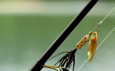Cybersecurity Awareness Month: 12 Tips To Help You And Your Company Dodge The Phishing Hook