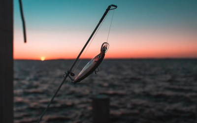 6 More Common Phishing Scams Your Employees Should Be Aware Of
