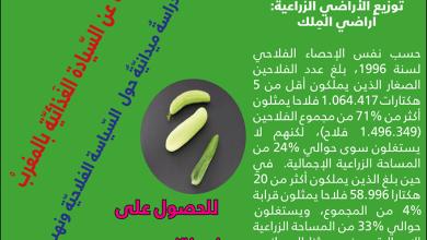 صورة المدخل المنهجي للإصدار الجديد لأطاك المغرب: السيادة الغذائية بالمغرب
