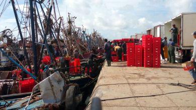 صورة عمال الصيد بأعالي البحار: شركة أومنيوم بطانطان يعتصمون