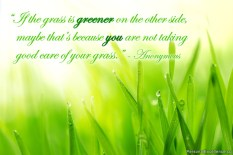 inspirational-quote-grass