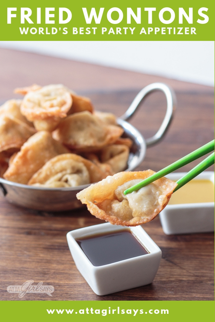 pork fried wontons and dipping sauce