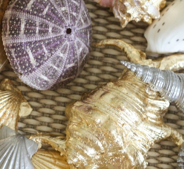 Learn two different methods for making gilded seashells using paint and metallic gold leafing. Such a luxe look for seashells.