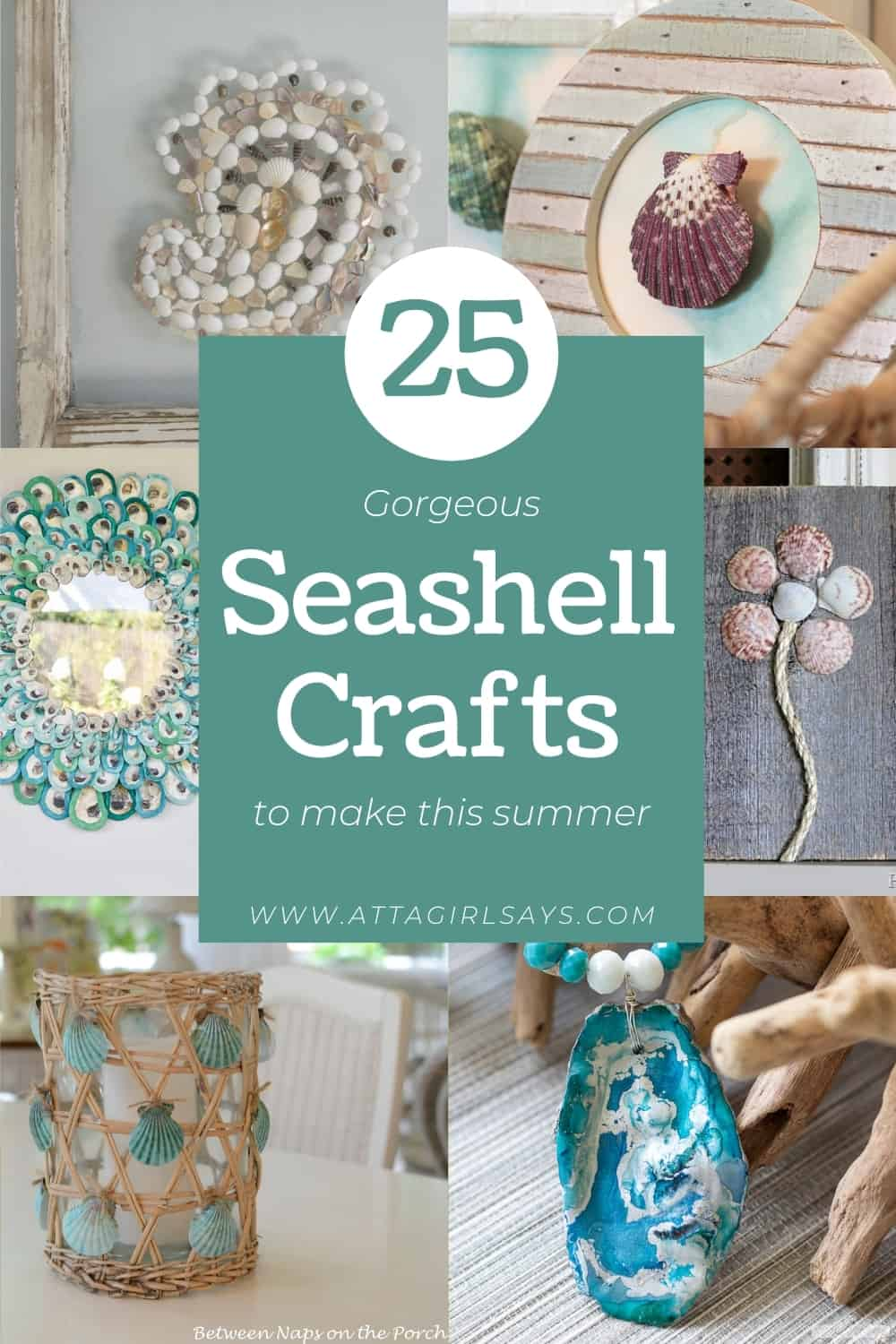 collage of different seashell crafts you can make