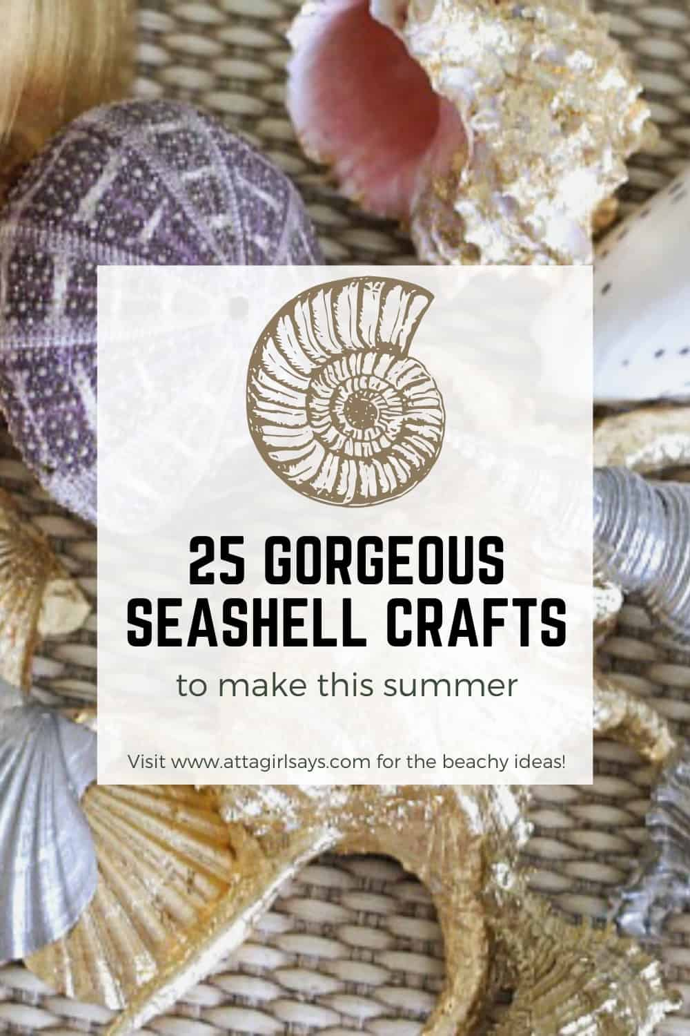 bowl of seashells with a text overlay