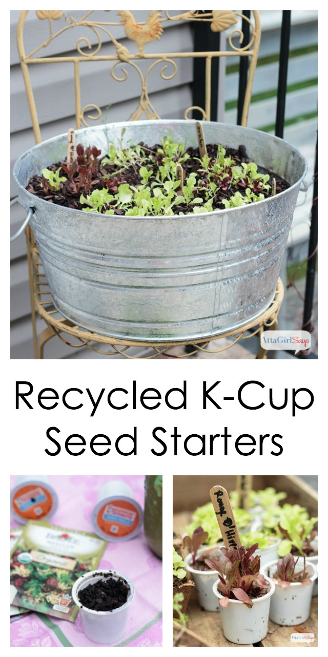 Don't throw away your Keurig K-Cups. Use them as seed starters for lettuce, herbs and other garden plants. You can also add the coffee grounds to your compost pile. #sponsored