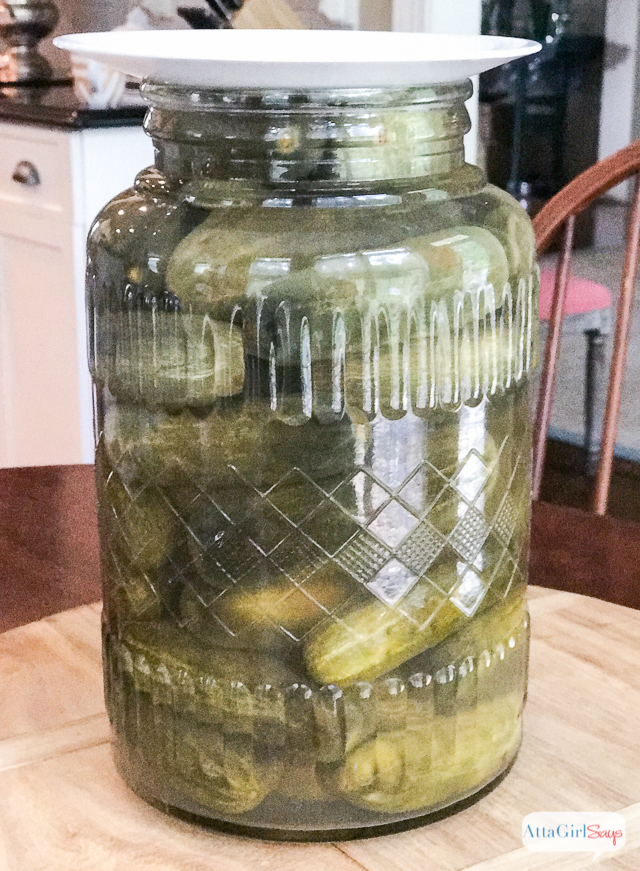 making pickles in a large glass jar