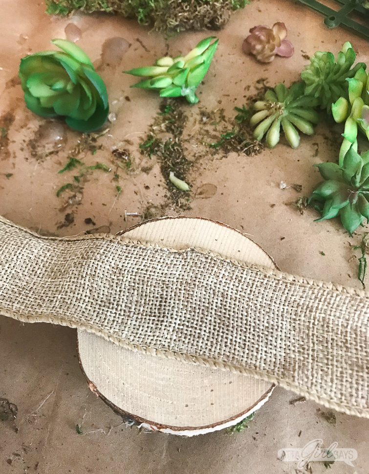 A closeup show showing how to attach a ribbon tie to the back of the wooden coaster to make a DIY succulent napkin ring miniature garden with sheet moss.