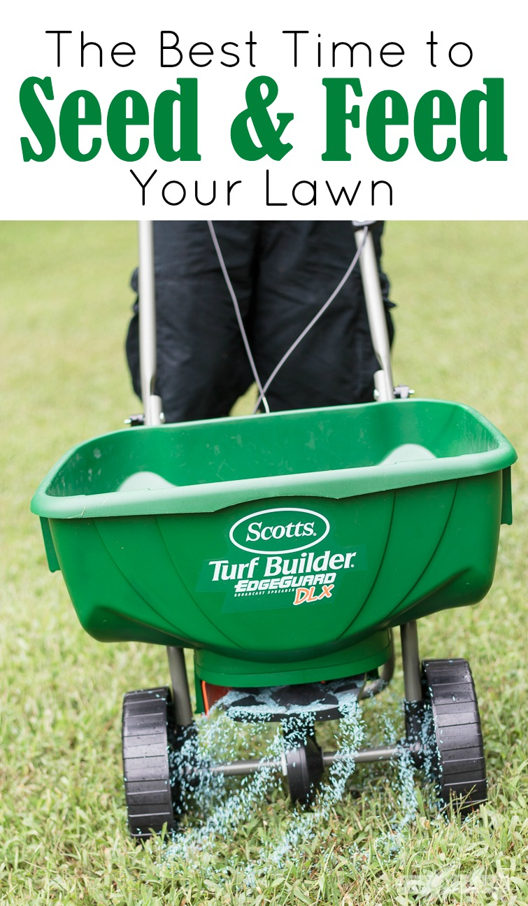 "Photo Titled ""The Best Time to Seed & Feed Your Lawn"" with a man pushing a Scotts broadcast grass seed spreader with seeds spraying out the bottom"