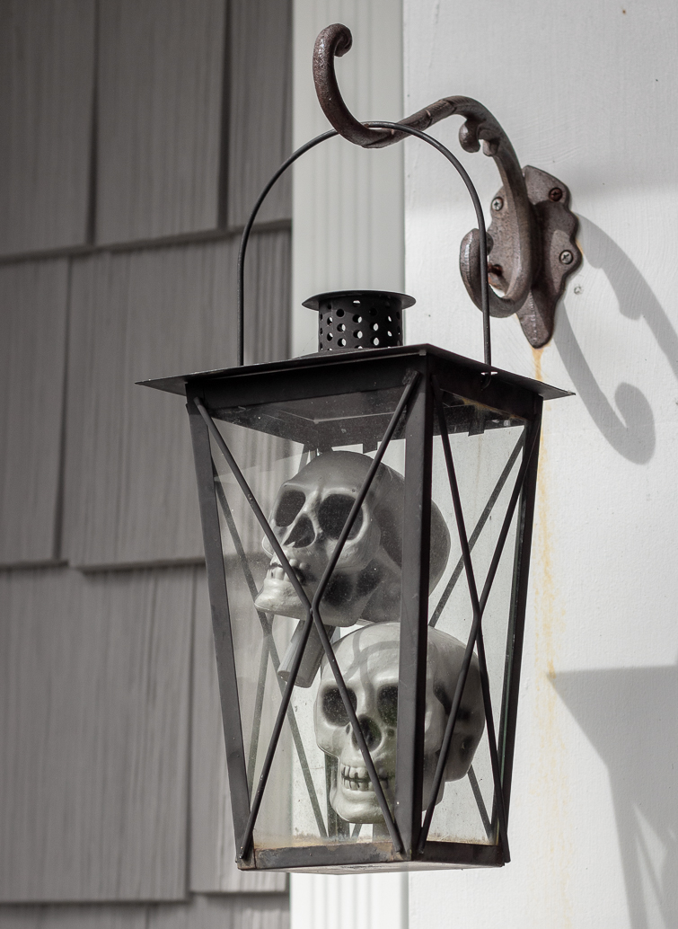 Halloween skulls in a black lantern